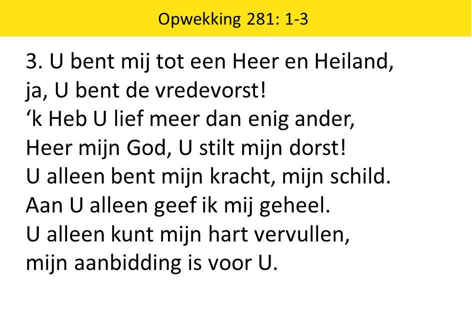 3. U bent mij tot een Heer en Heiland, ja, U bent de vredevorst!