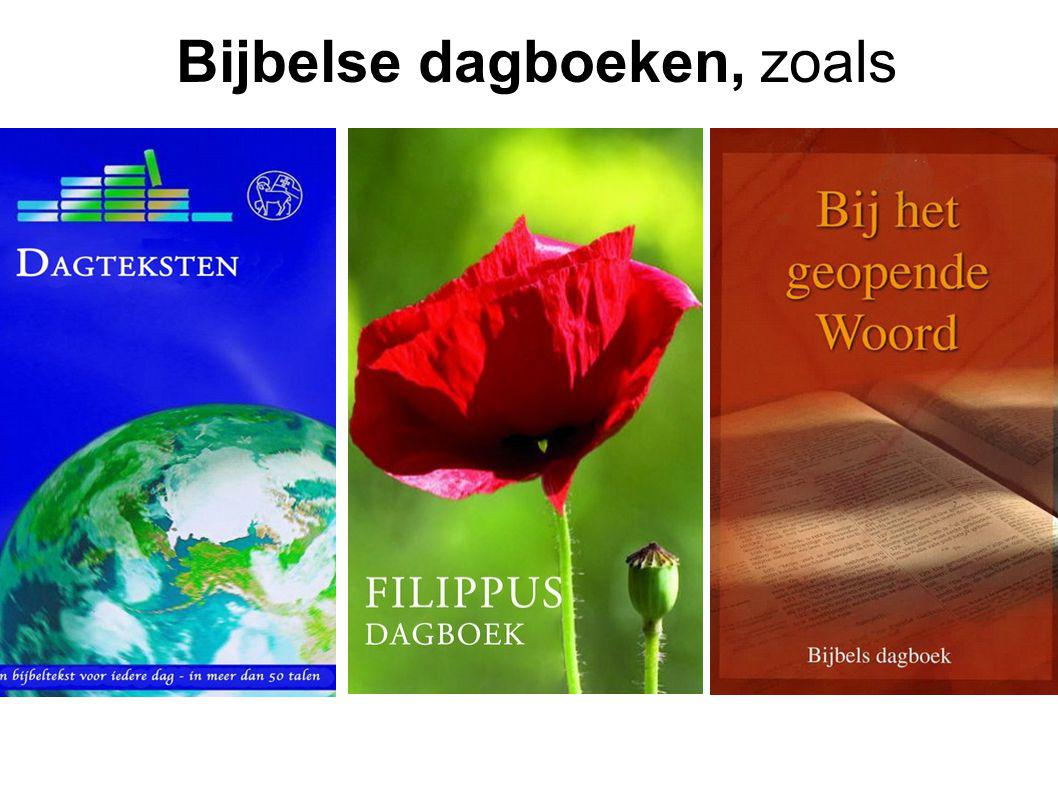 Bijbelse dagboeken, zoals