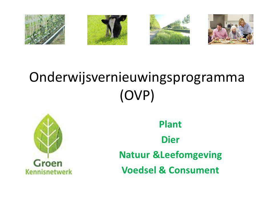 Onderwijsvernieuwingsprogramma (OVP)