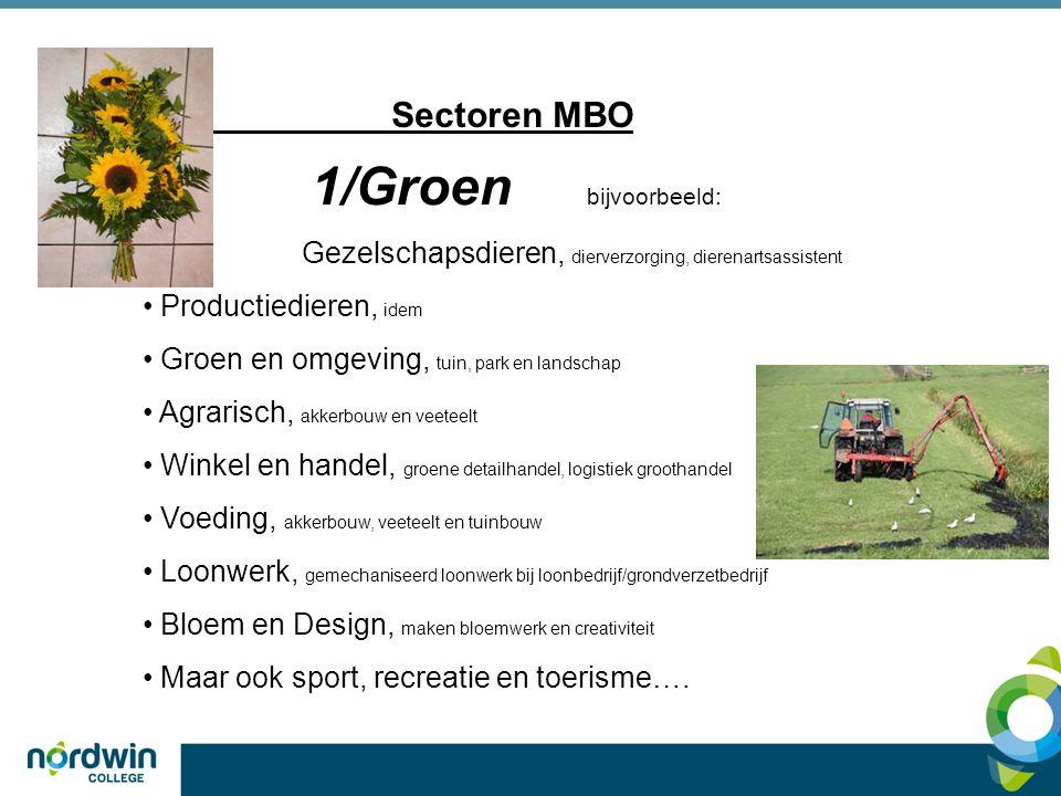 1/Groen bijvoorbeeld: Sectoren MBO