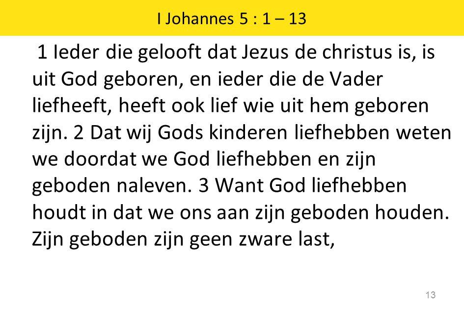 I Johannes 5 : 1 – 13