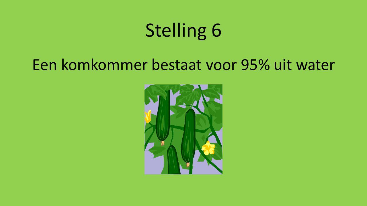 Een komkommer bestaat voor 95% uit water