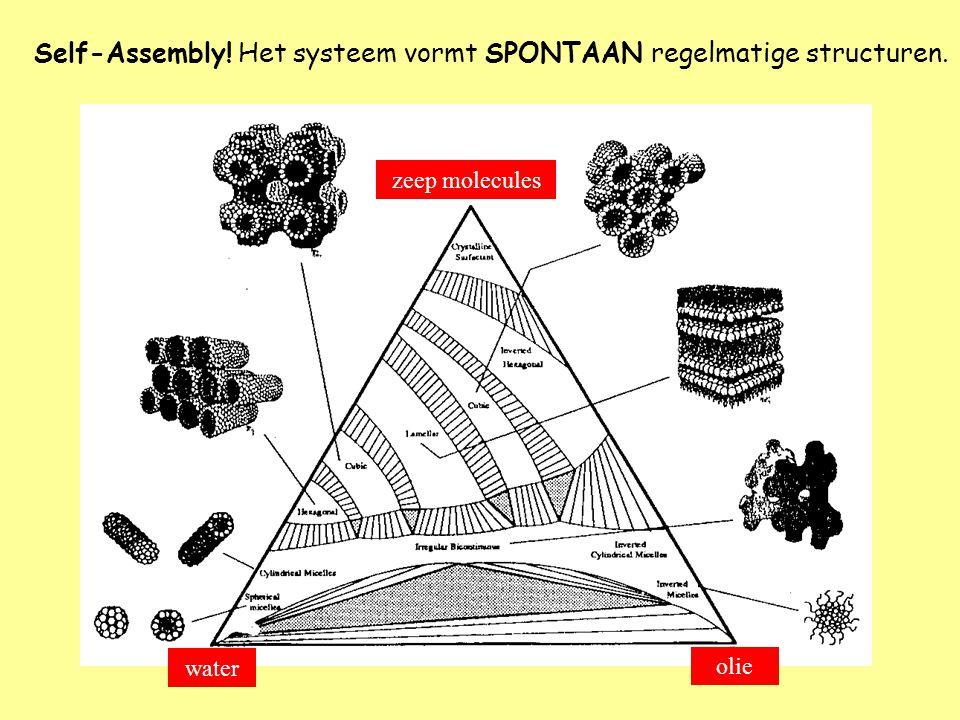Self-Assembly! Het systeem vormt SPONTAAN regelmatige structuren.