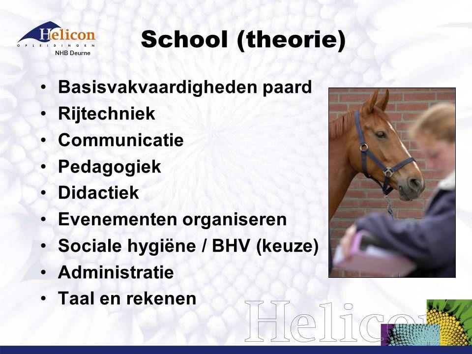 School (theorie) Basisvakvaardigheden paard Rijtechniek Communicatie