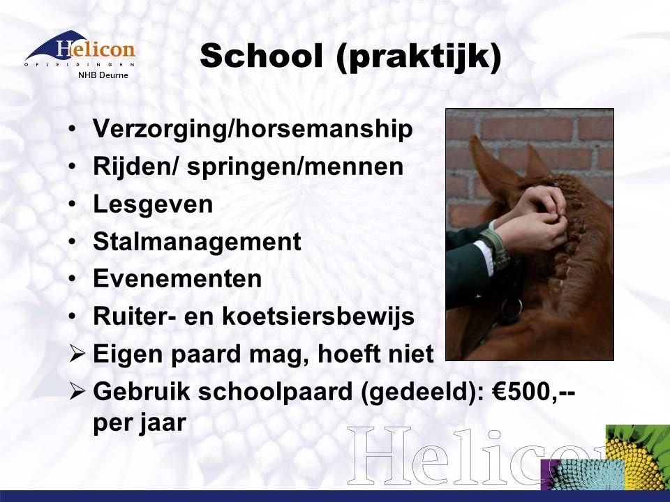 School (praktijk) Verzorging/horsemanship Rijden/ springen/mennen