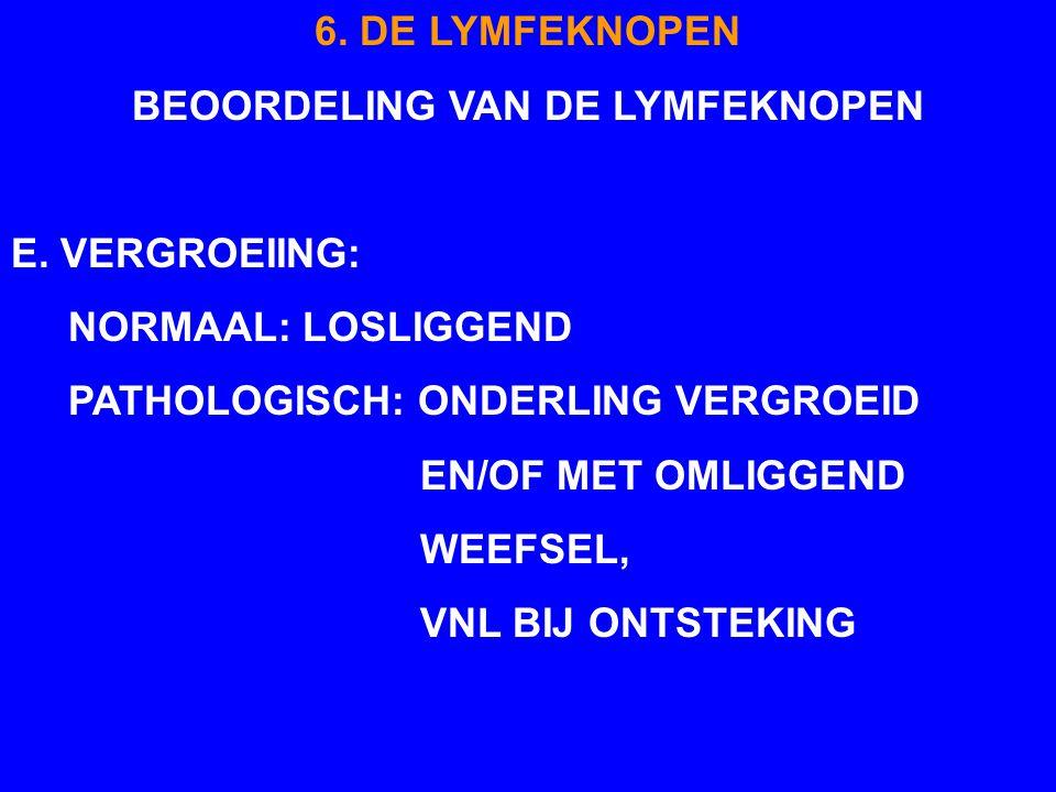 BEOORDELING VAN DE LYMFEKNOPEN
