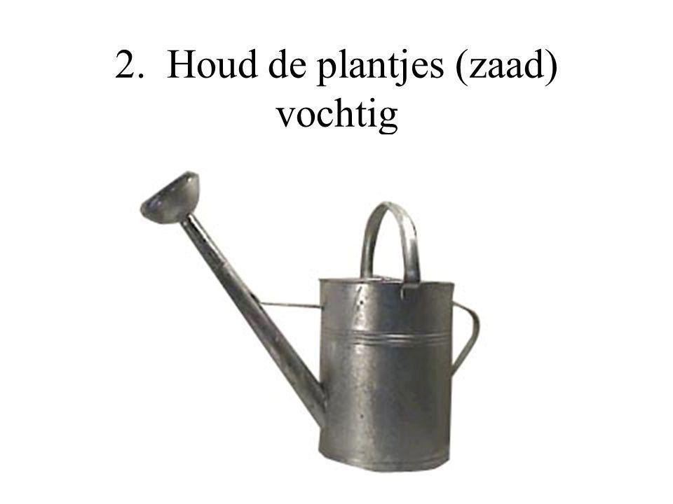 2. Houd de plantjes (zaad) vochtig