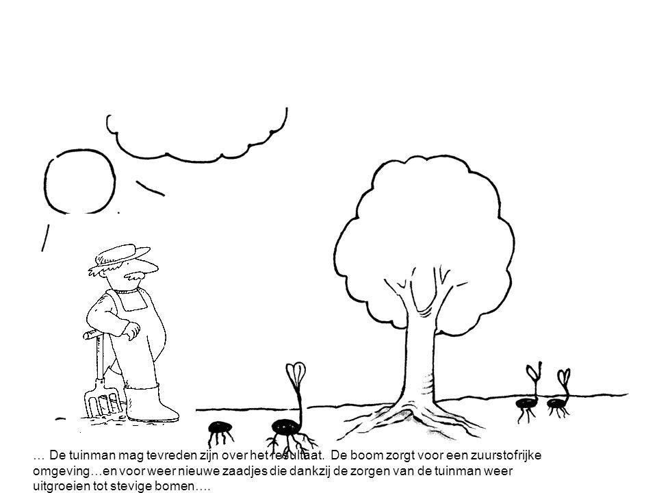 Het verhaal van de tuinman.
