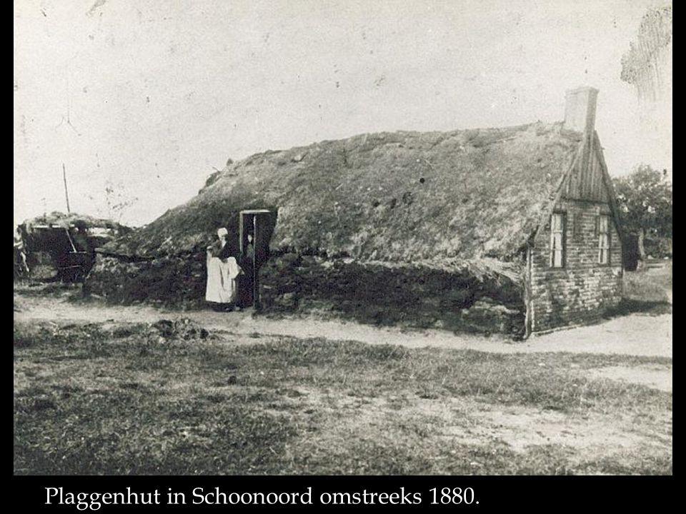 Plaggenhut in Schoonoord omstreeks 1880.