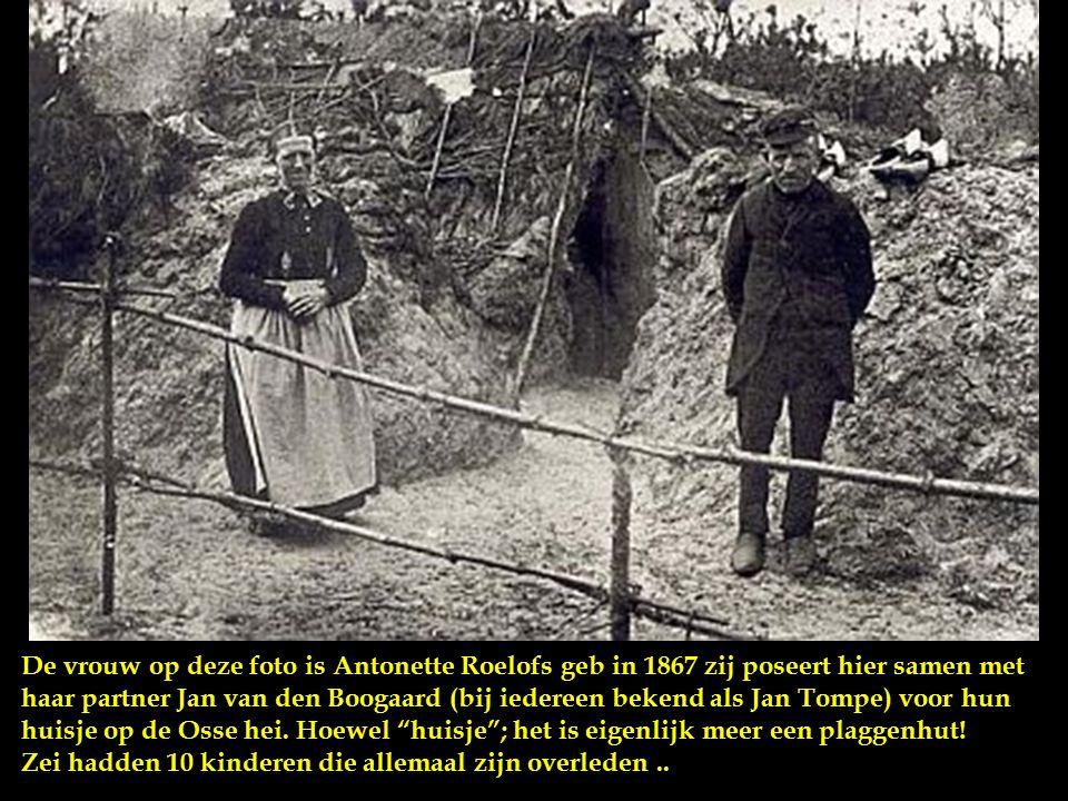 De vrouw op deze foto is Antonette Roelofs geb in 1867 zij poseert hier samen met haar partner Jan van den Boogaard (bij iedereen bekend als Jan Tompe) voor hun huisje op de Osse hei.