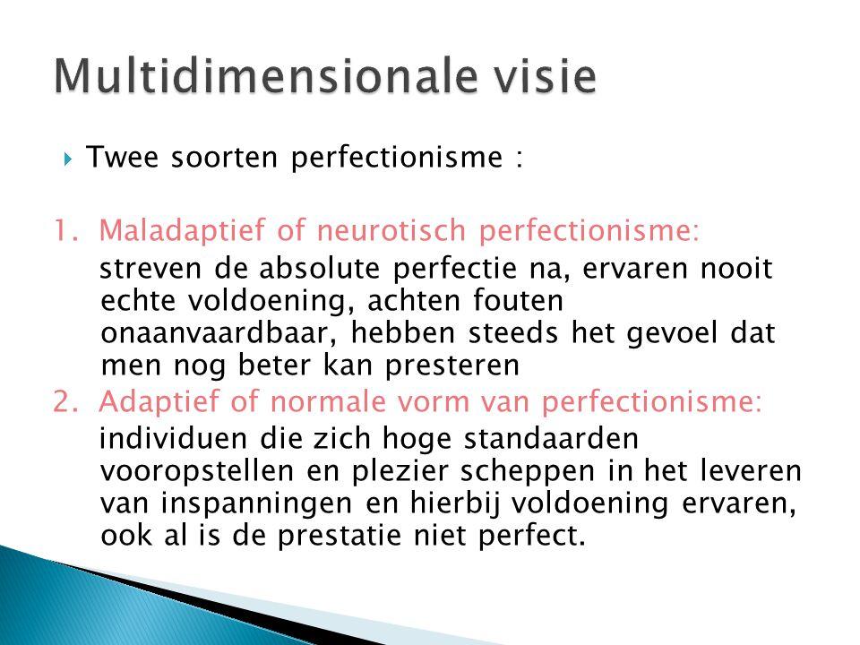 Multidimensionale visie