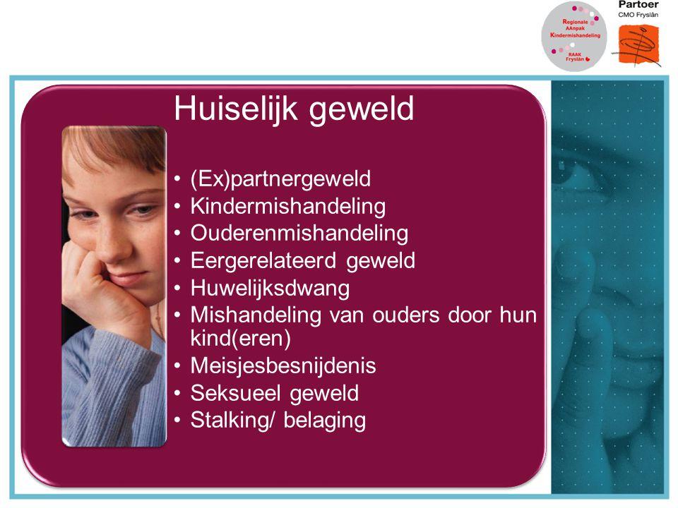 Huiselijk geweld (Ex)partnergeweld Kindermishandeling