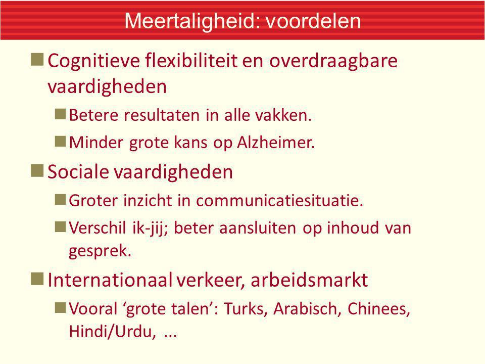 Meertaligheid: voordelen