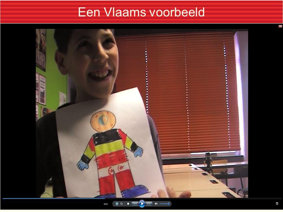Een Vlaams voorbeeld