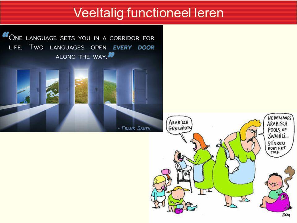 Veeltalig functioneel leren