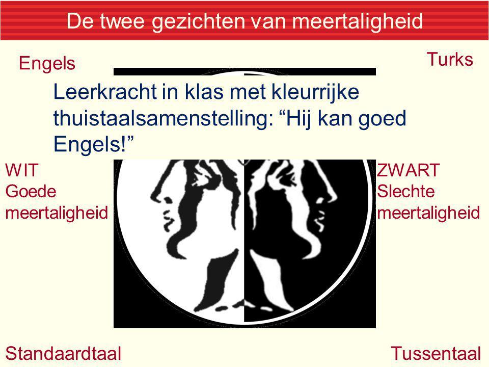 De twee gezichten van meertaligheid