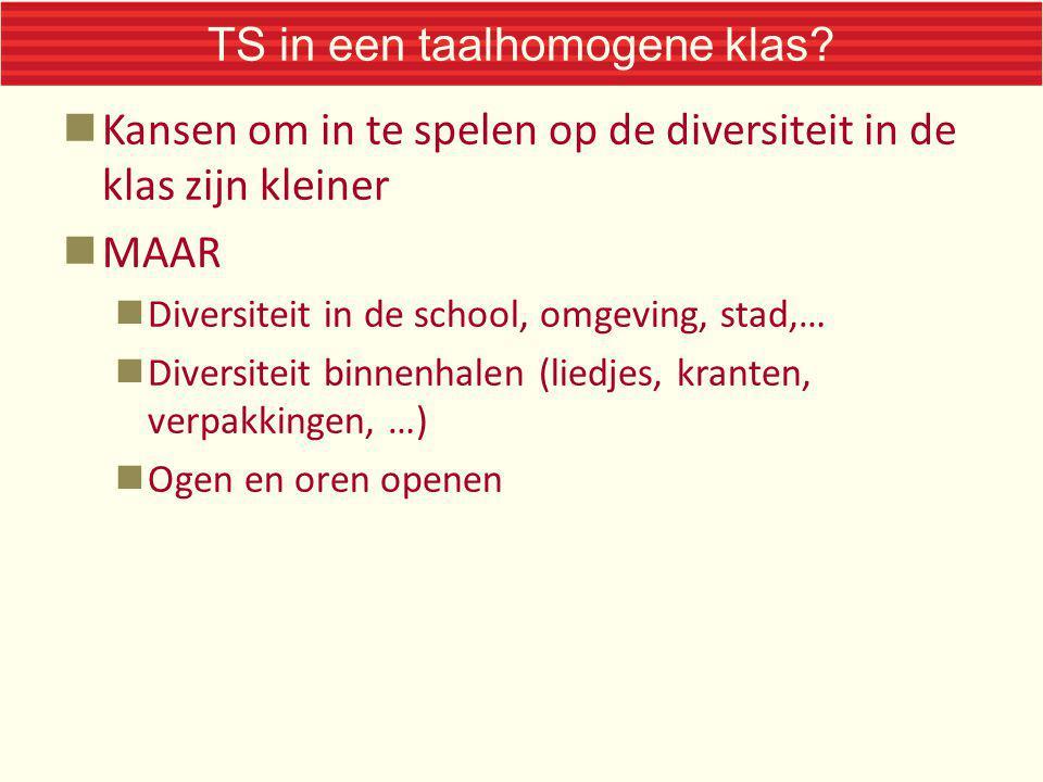 TS in een taalhomogene klas