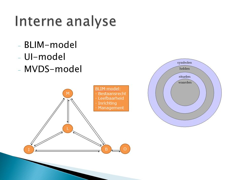 Interne analyse BLIM-model UI-model MVDS-model
