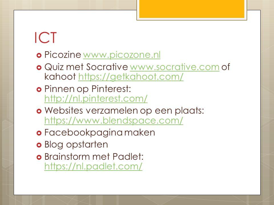 ICT Picozine www.picozone.nl