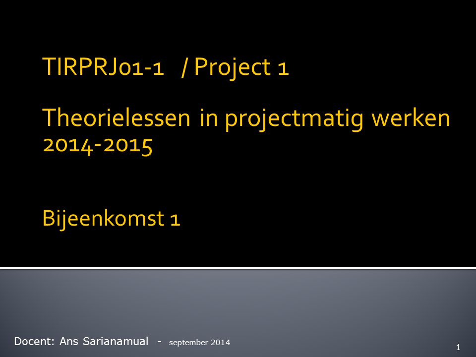 Theorielessen in projectmatig werken 2014-2015