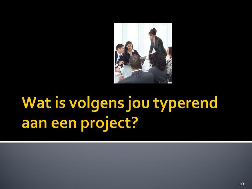 Wat is volgens jou typerend aan een project