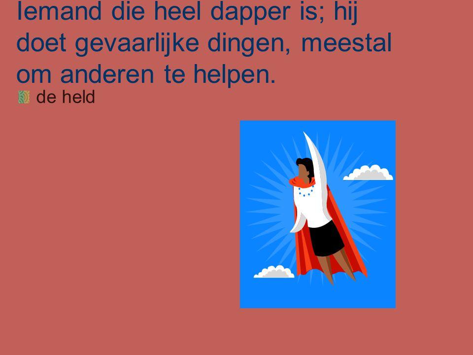 Iemand die heel dapper is; hij doet gevaarlijke dingen, meestal om anderen te helpen.