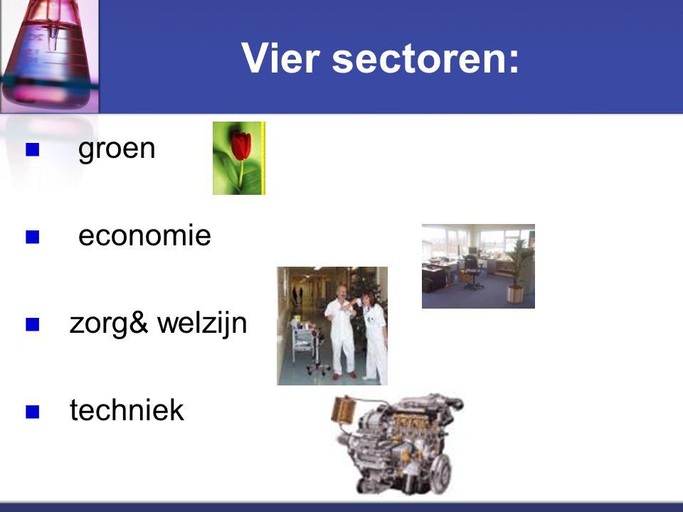 Vier sectoren: groen economie zorg& welzijn techniek