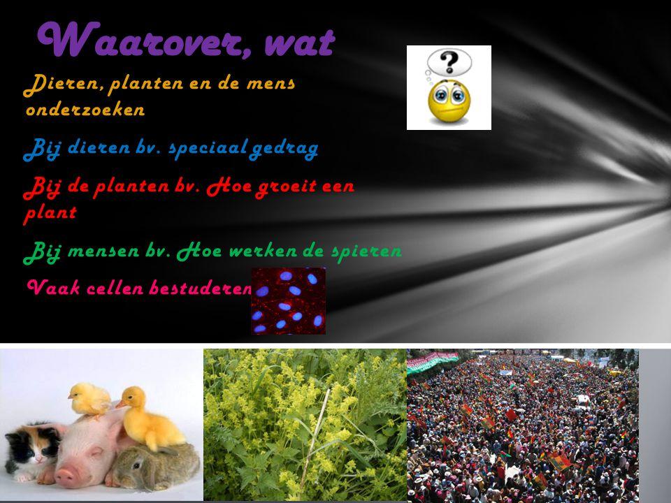 Waarover, wat Dieren, planten en de mens onderzoeken