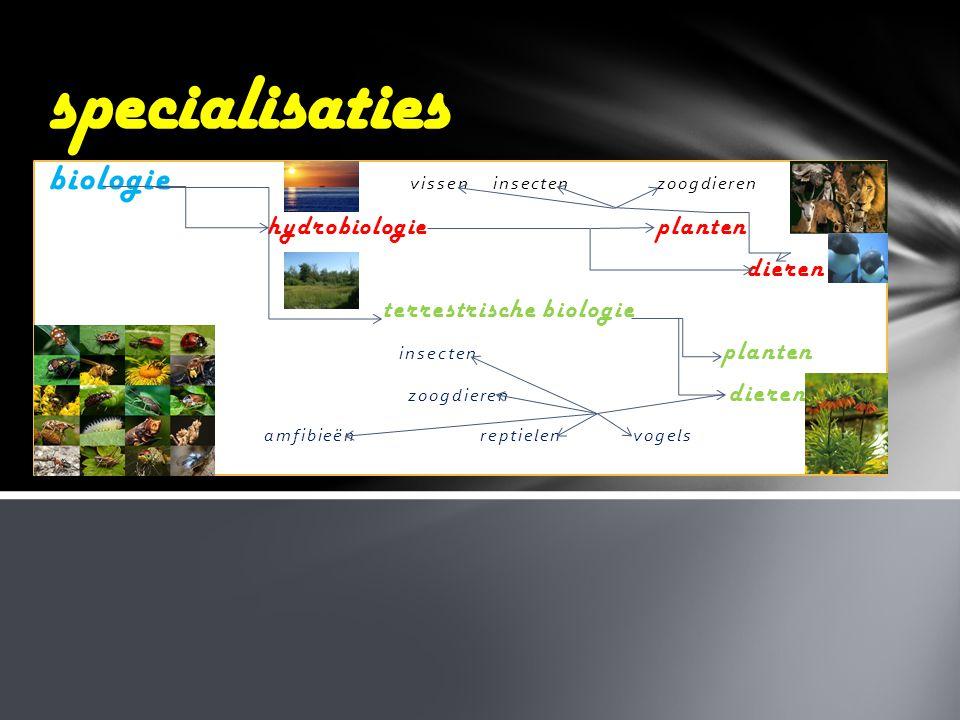 specialisaties hydrobiologie planten dieren terrestrische biologie