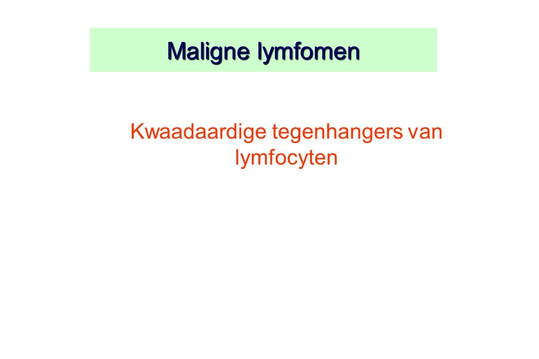 Kwaadaardige tegenhangers van lymfocyten
