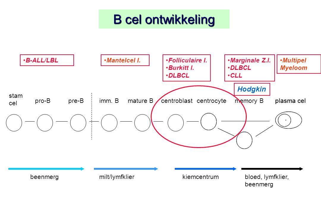 B cel ontwikkeling Hodgkin B-ALL/LBL Mantelcel l. Folliculaire l.