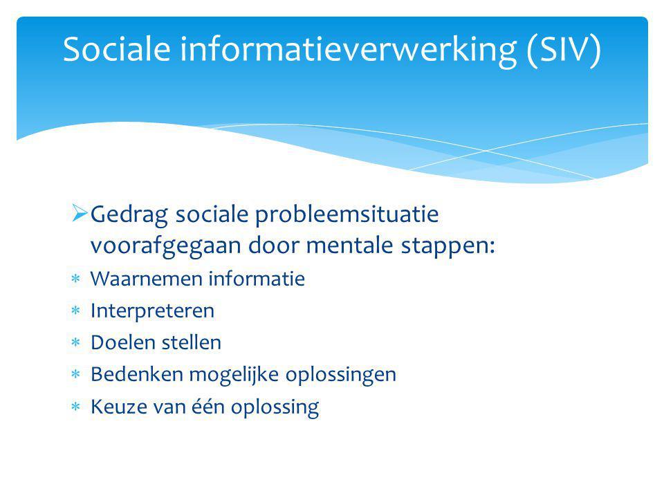 Sociale informatieverwerking (SIV)