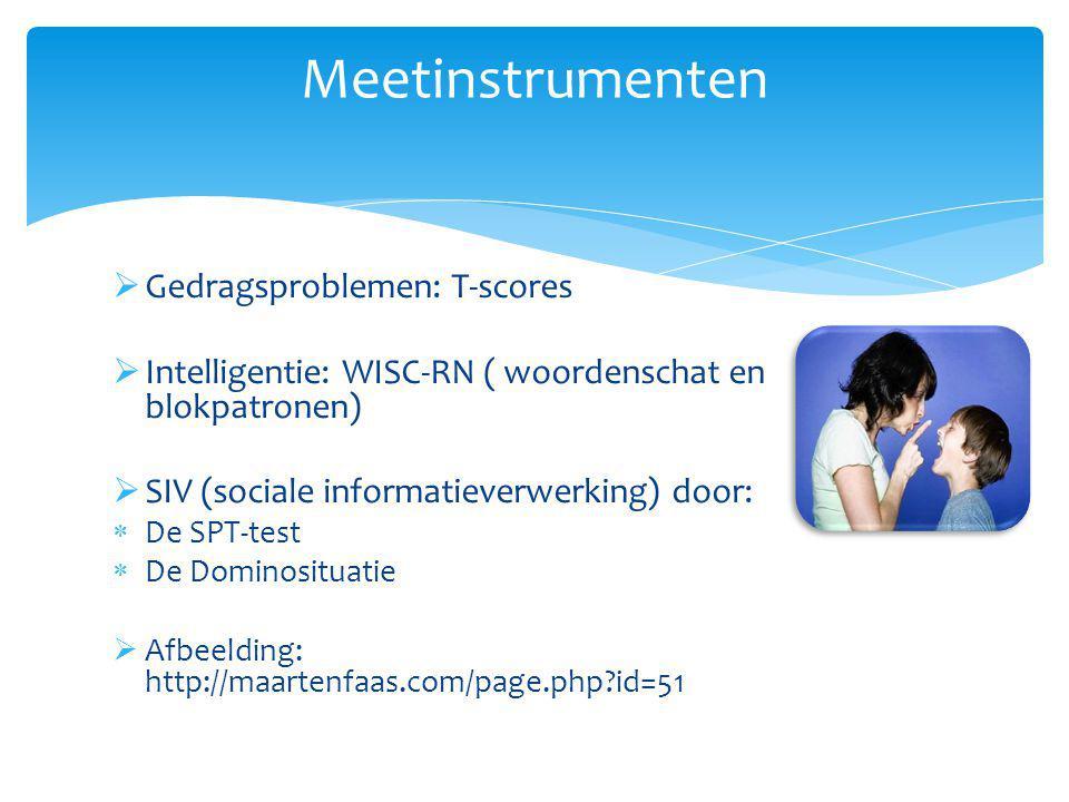 Meetinstrumenten Gedragsproblemen: T-scores
