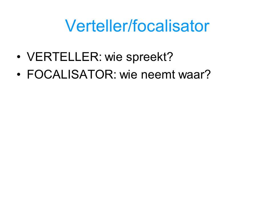 Verteller/focalisator