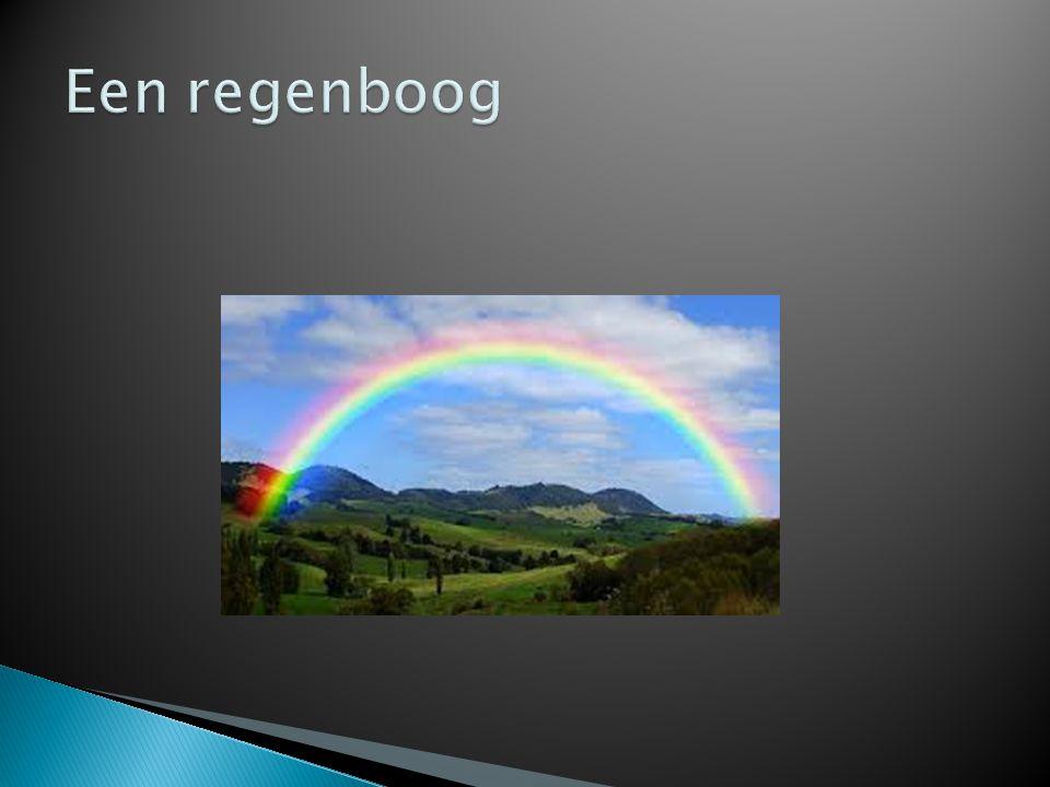 Een regenboog