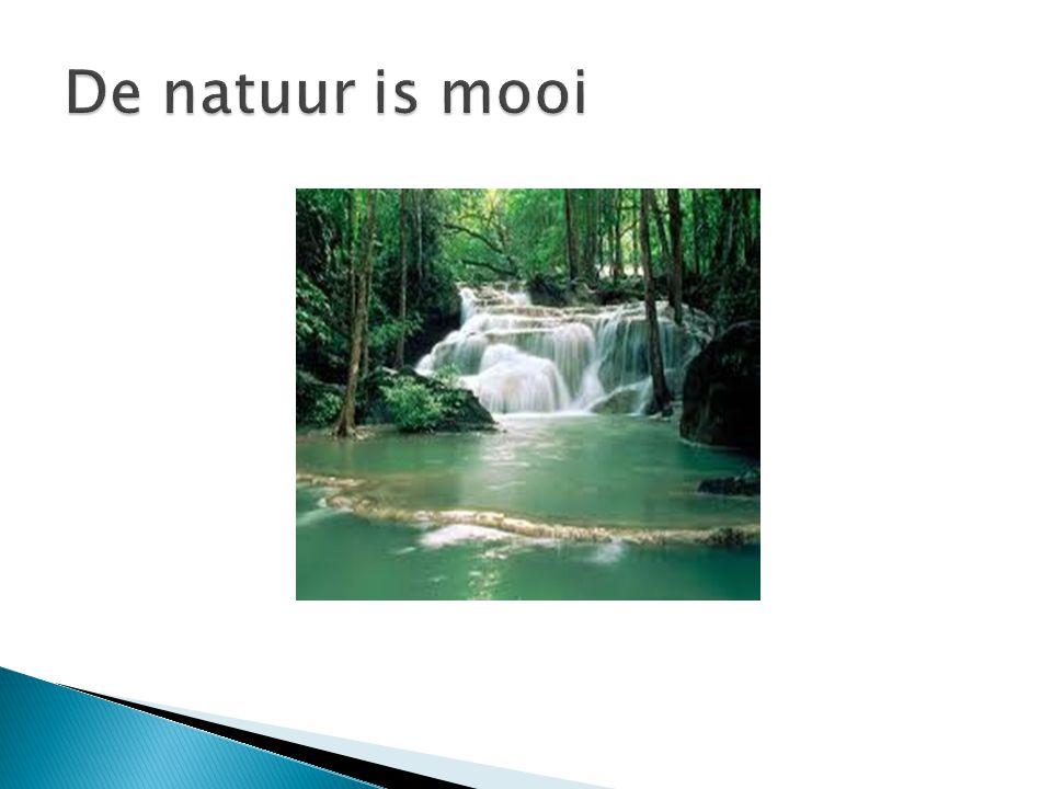 De natuur is mooi