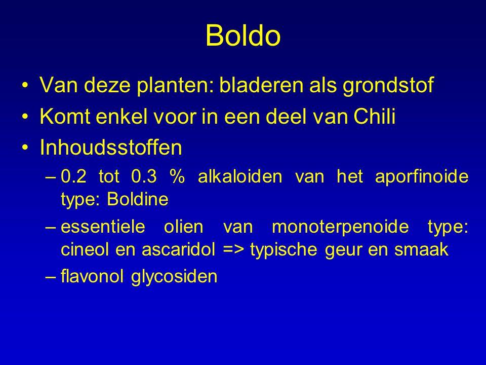 Boldo Van deze planten: bladeren als grondstof