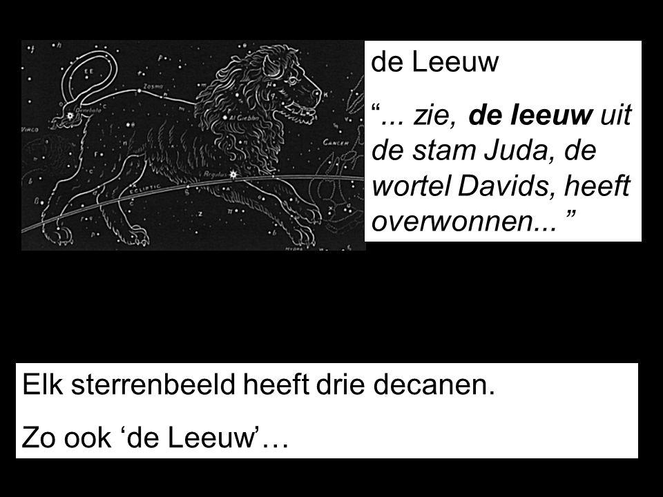 de Leeuw ... zie, de leeuw uit de stam Juda, de wortel Davids, heeft overwonnen... Elk sterrenbeeld heeft drie decanen.