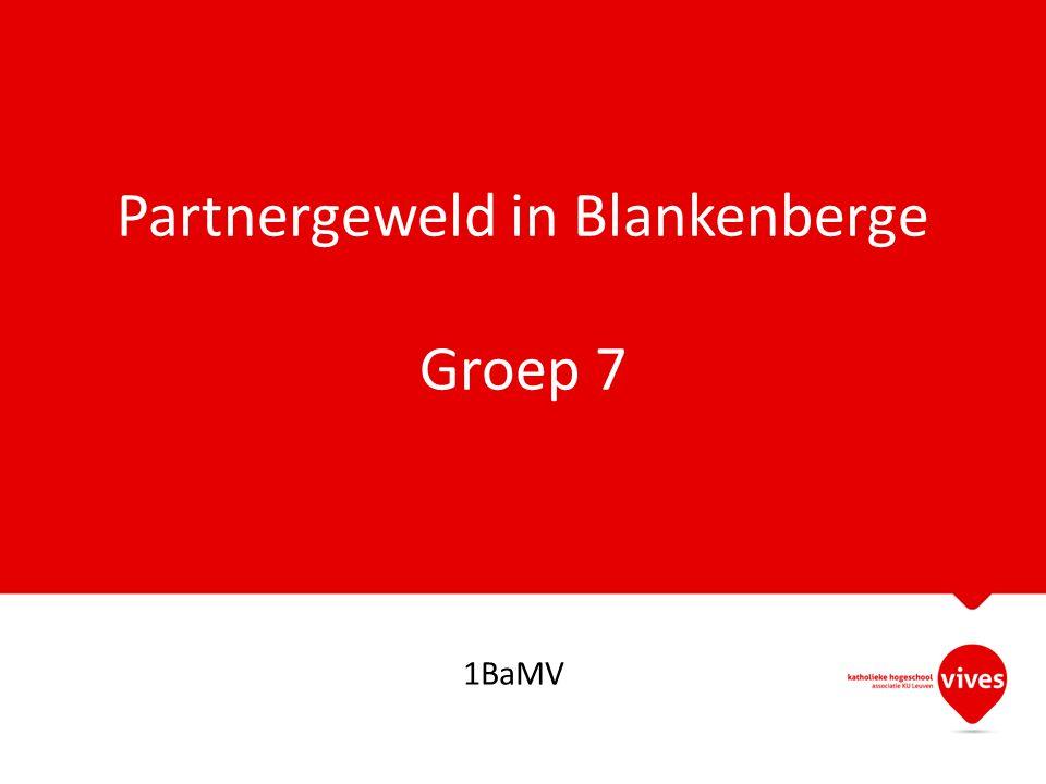 Partnergeweld in Blankenberge Groep 7