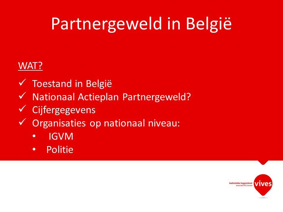 Partnergeweld in België