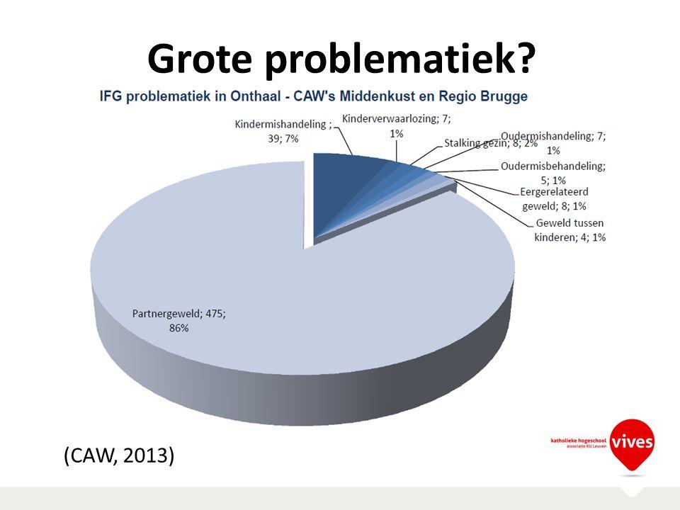 Grote problematiek (CAW, 2013)