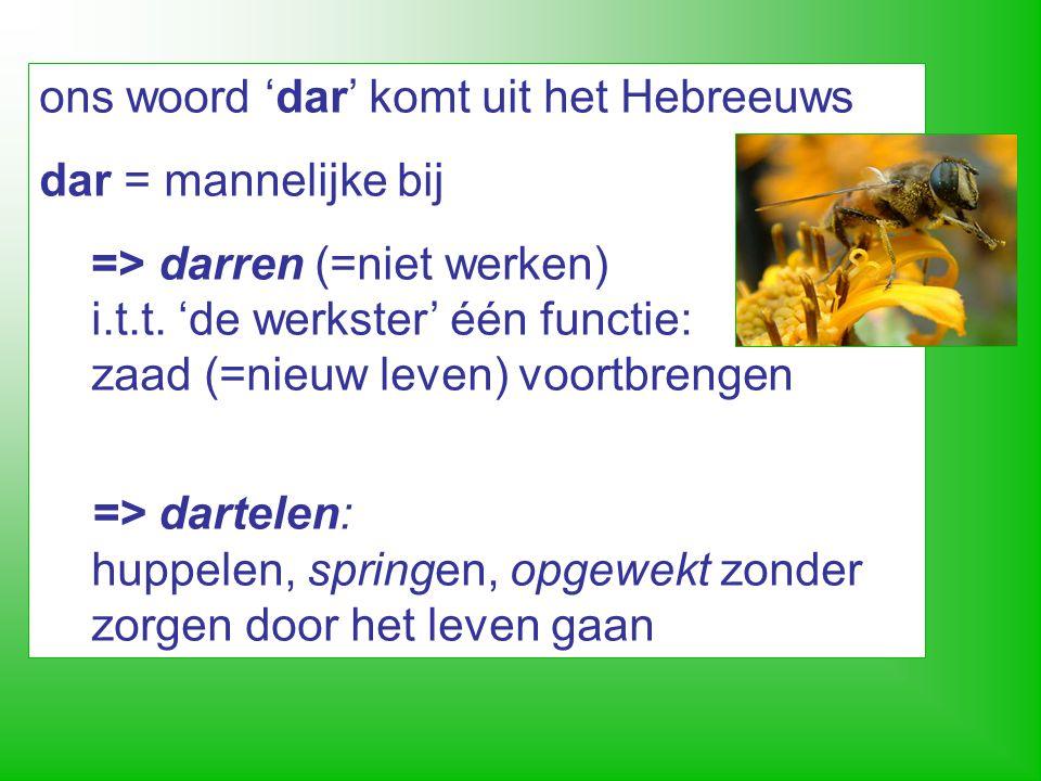 ons woord 'dar' komt uit het Hebreeuws