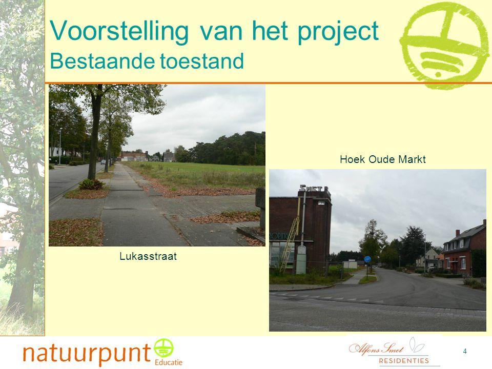 Voorstelling van het project