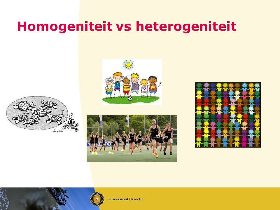 Homogeniteit vs heterogeniteit
