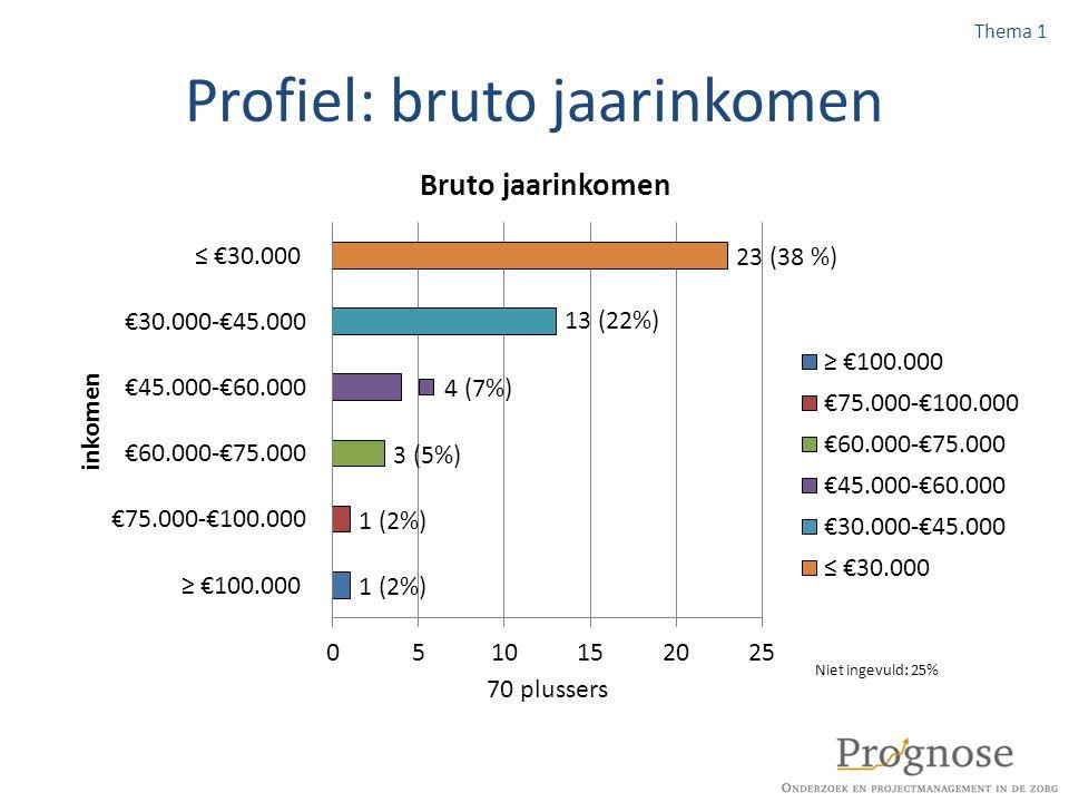 Profiel: bruto jaarinkomen