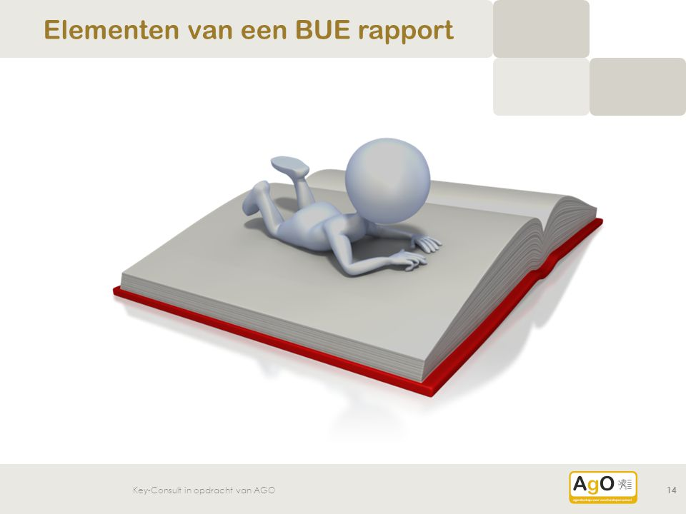 Elementen van een BUE rapport