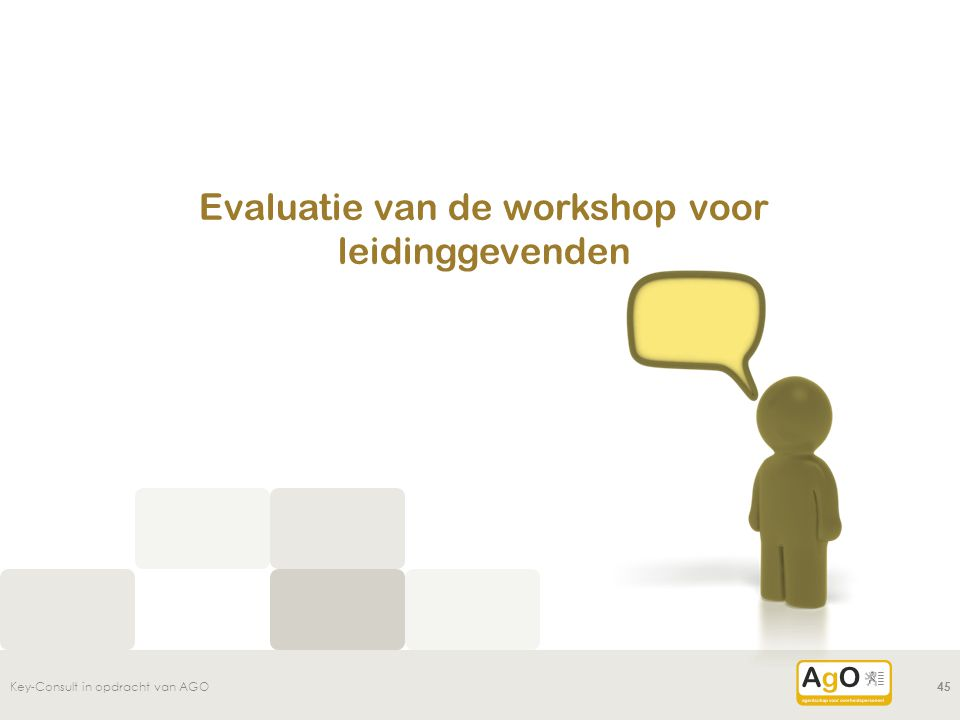 Evaluatie van de workshop voor leidinggevenden