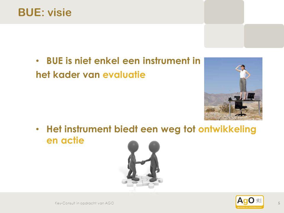 BUE: visie BUE is niet enkel een instrument in het kader van evaluatie