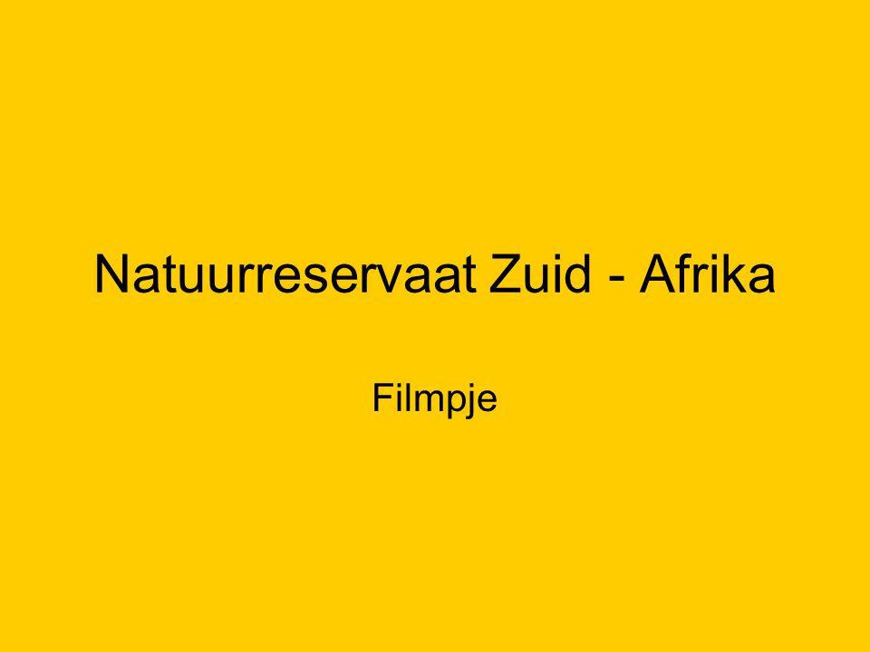 Natuurreservaat Zuid - Afrika