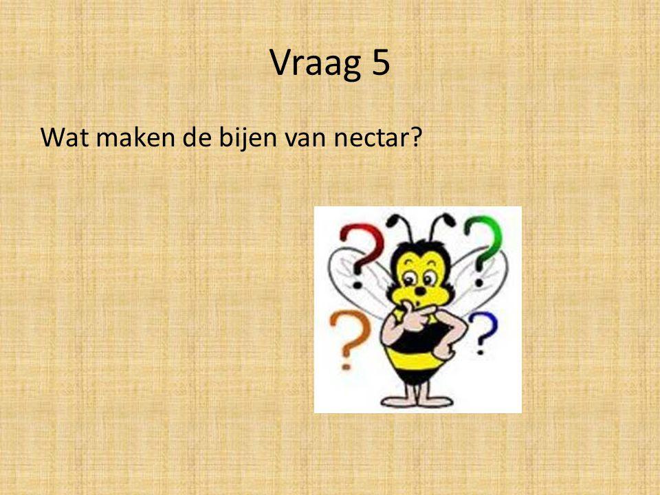 Vraag 5 Wat maken de bijen van nectar